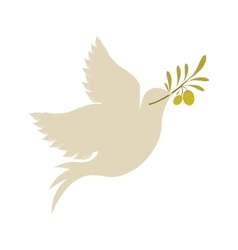 Dove with olive branch icon vector