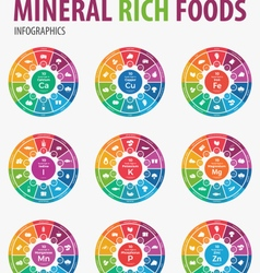 Mineral rich foods iinfographics vector