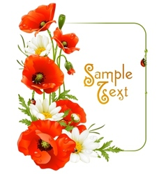 Flower frame 8 poppy and camomile vector