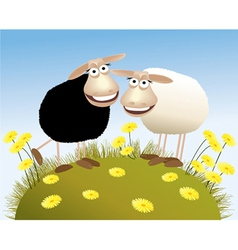 Black and white sheep vector image vector image