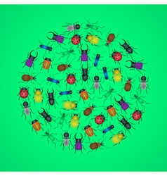 color bugs and beetles icons in circle eps10 vector image vector image