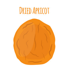 Dried apricot in cartoon style vegetarian snack vector