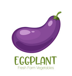 eggplant isolated on white background vector image