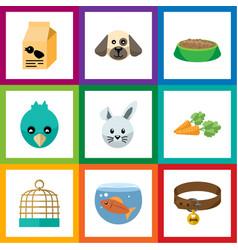 Flat icon pets set of nutrition box bunny bird vector