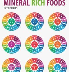 Mineral rich foods iinfographics vector