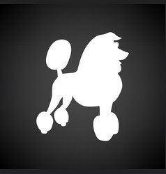poodle icon vector image vector image