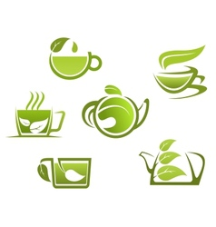 Herbal drinks and tea vector