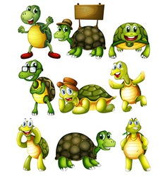 Turtle actions vector