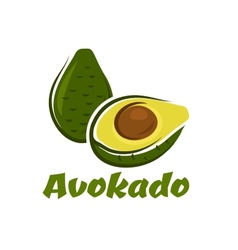 Green avokado fruit sketch vector