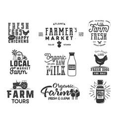 farmer s market organic food milk and eggs vector image