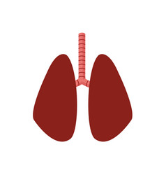 Lung human organ healthycare icon vector