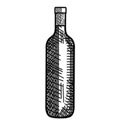 Bottle wine isolated icon vector
