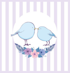colorful bird collection collection of cute hand vector image