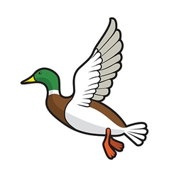 flying duck vector image