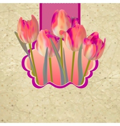 Retro floral background with tulips EPS 10 vector image