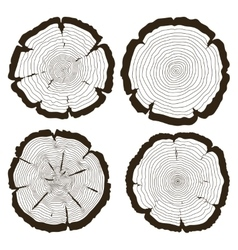 tree rings and saw cut trunk set vector image vector image