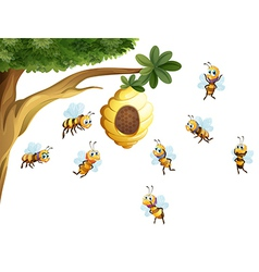 A tree with a beehive surrounded by bees vector