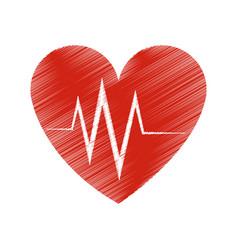 Heart cardiogram icon image vector