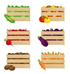 Autumn vegetables in wooden boxes vector
