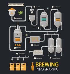 Beer infographic or brewery line factory process vector