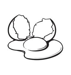 cracked broken and spilled chicken egg sketch vector image vector image