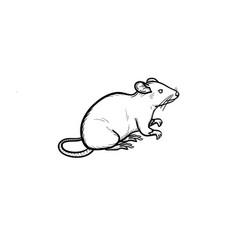 Lab rat hand drawn sketch icon vector