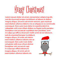 owl on the branch in the santa claus hat and boots vector image