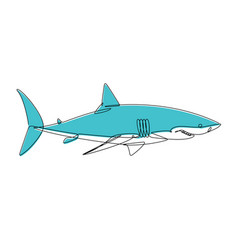 shark continuous line vector image vector image
