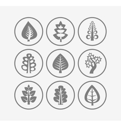 Trees icons on white background vector image