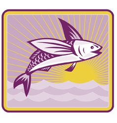 Flying fish vector