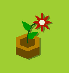 Flat icon design collection flower in the ground vector