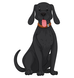 Cute dog with black fur vector