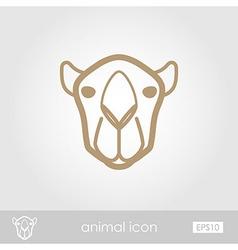 Camel outline thin icon animal head symbol vector