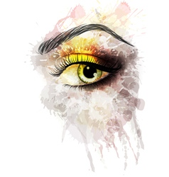 Eye made of colorful splashes vector