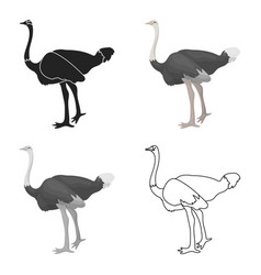 ostrich icon in cartoon style isolated on white vector image vector image