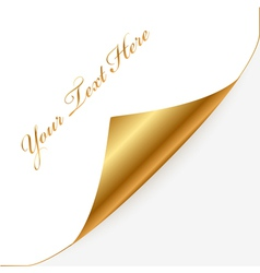 Gold and white note paper vector