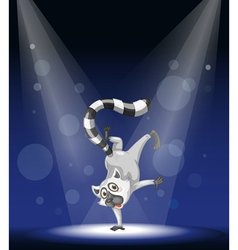 Lemur Stage Performance vector image