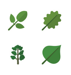 Flat icon natural set of alder foliage hickory vector