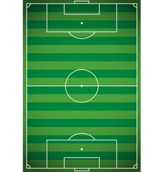 Football - Soccer Field Aerial View vector image
