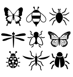 Insect collection vector