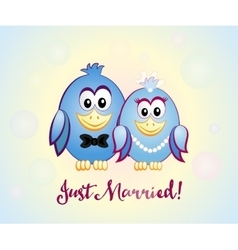 Just married blue birds vector