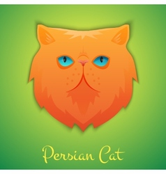 Persian cat vector image