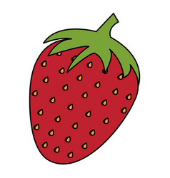 strawberry fresh isolated icon vector image