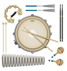 Set of percussion music instruments drums vector image