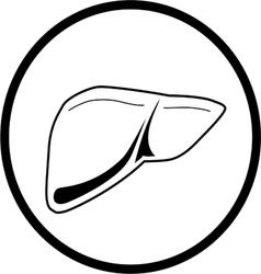 Liver icon vector