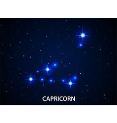 Set of symbol zodiac capricorn vector