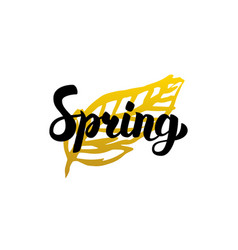 Handwritten calligraphy spring vector