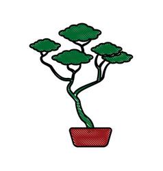 Drawing bonsai tree ceramic pot botanical vector
