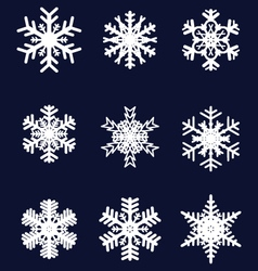 Different white snowflakes vector