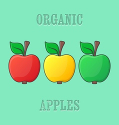 Red yellow green apples vector